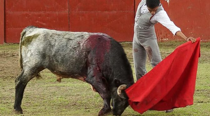 Antonio Romero vuelve al toro en Piedras Negras