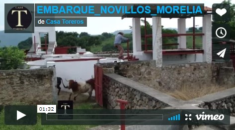 Embarque de los novillos para Morelia…(Video)