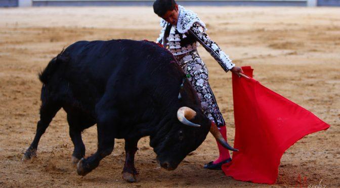 Oreja para Román y vuelta para Joselito Adame en Madrid