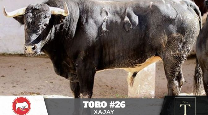 Los toros de Xajay para Pachuca…(Fotos)