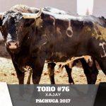 Toro 76