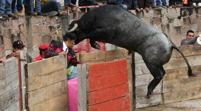 Ortega triunfa en Ixtacamaxtitlan y Gamero es lesionado