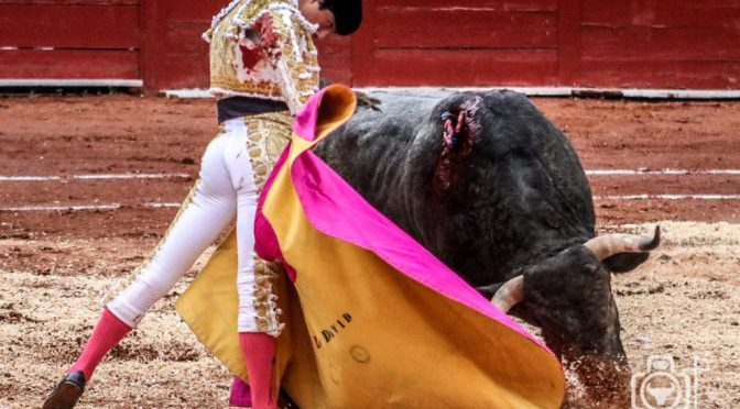 Luis David triunfa en la tercera de Zacatecas