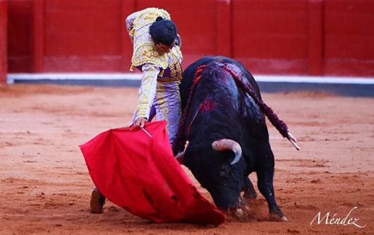 Diego San Román, ovacionado en Salamanca