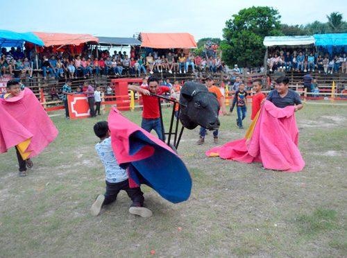 Nace en Yucatán el proyecto Toros para niños