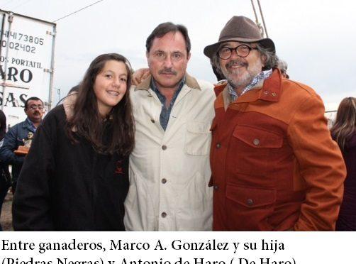 En la novillada de la Prensa….(Fotos)