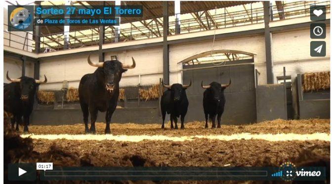 Seis toros de El Torero para la decimoséptima de San Isidro…(Video)